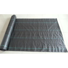PP Woven Geotextile Fabric with Competitive Prices