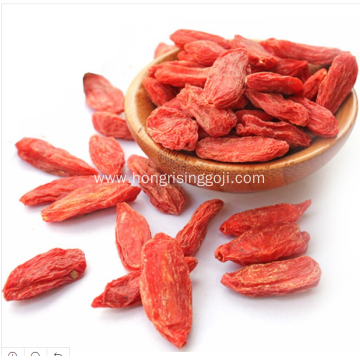 HALAL Certificated Goji Berries Dried