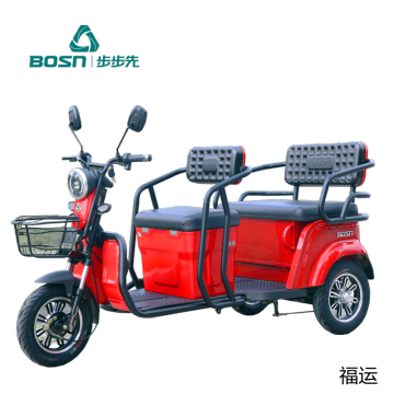 Electric Recreational Tricycles for Passengers