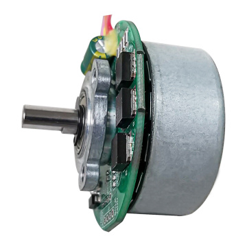 DC Brushed Motor for Electric Tool, 22W Brush Motor & Micro DC Brush Motor for Vacuum Cleaner Customizable