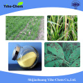 Agrochemical Fungicide Thiophanate-methyl 97%TC 70%WP 50SC