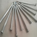 High quality concrete steel nails