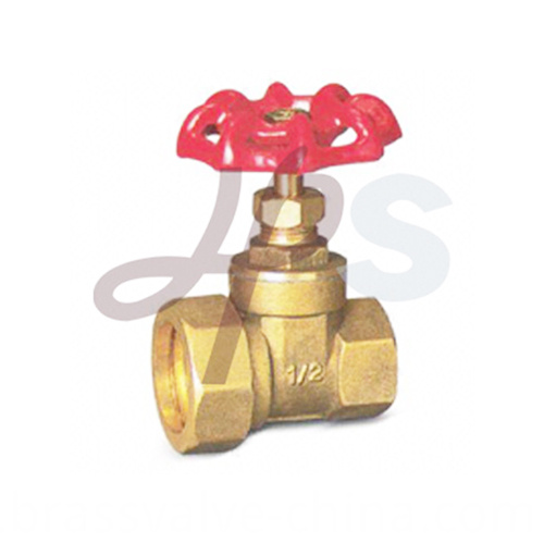 Brass Reducing Gate Valves Hg21