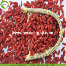 Factory Supply Fruits Nutrition 450 500 Goji Berry