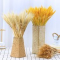 100Pcs Natural Dried Flower Wheat Ear For Home Decoration Flower Arrangement Wedding decoration Real Flower Grass Shooting Props
