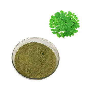 Small MOQ Top Quality moringa leaf powder moringa oleifera leaf powder