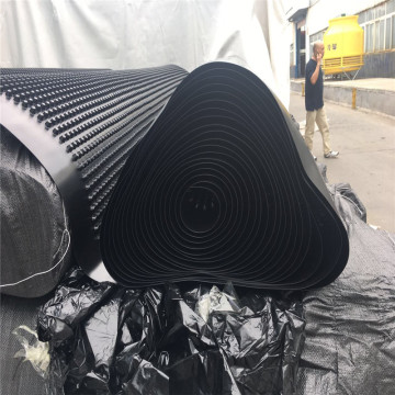Subway Anti-Seepage Construction HDPE Drainage Board