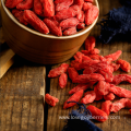 Bulk Wholesale Goji Berry