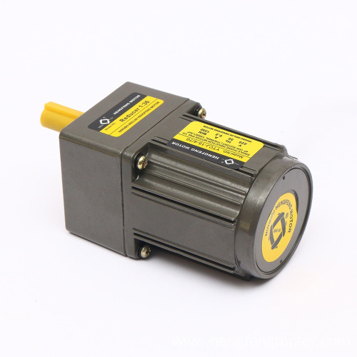 15W 110/220V Reversible AC Gear Motor with Gearbox