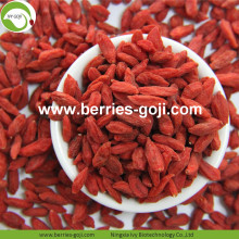 Hot Sale Dried Tibetan Wolfberry