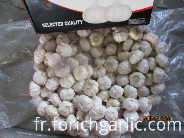 2019 Best Quality Pure White Garlic