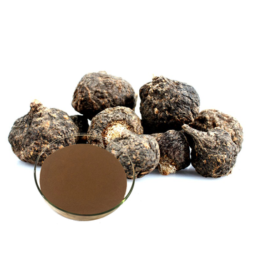 Peru Organic Black Maca Root Extract Powder