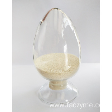Phytase in animal feed FACZYME 10HG