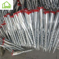 Hot galvanized different sizes factory ground screw