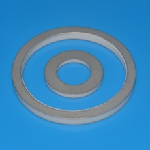 I-High Precision Alumina Ceramic Ring Nge-Metallization