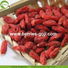 Wholesale Healthy Red Low Pesticide Goji Berries