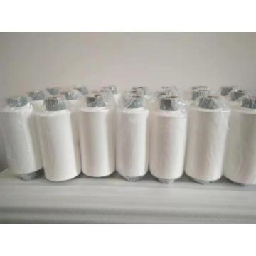 Hydrophilic Pes Filter Membrane for Water Purification