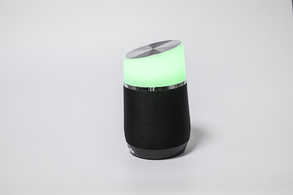 Portable Mobile Speaker