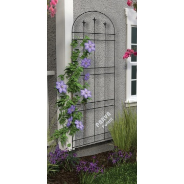 Classic Arch Trellis with Finials steel black