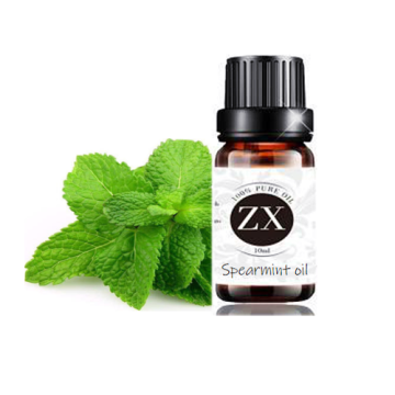 Humidifier Fragrance Lamp Oil Spearmint oil Essence