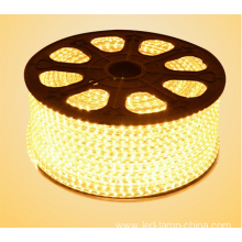 5050 LED Lights AC110V LED Tape Light LED Strip