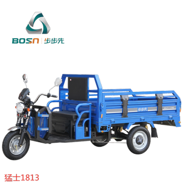 Hot sale trike for cargo electric tricycle