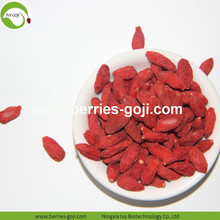 Factory Wholesale Best Quality Top Quality Wolfberries