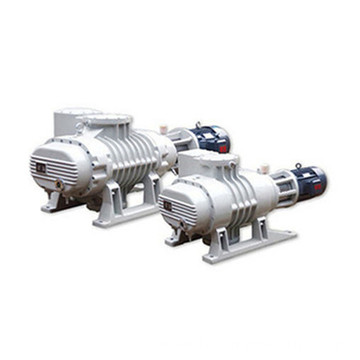 Roots Vacuum Pump Is Lower Cost