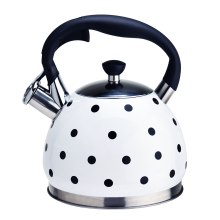 3L food grade stainless steel water kettle