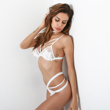 Sexy Fancy Floral embroidery Bra&Thong Set
