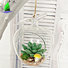Wholesale Apple Shaped Glass Hanging Air Plant Terrarium
