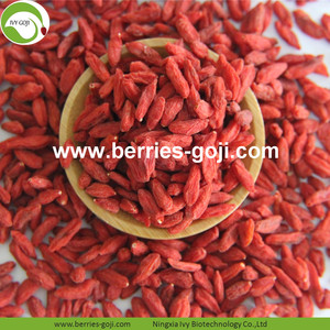 New Harvest Factory Supply Dried Ningxia Wolfberry