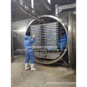Pet food Freeze Drying Plant