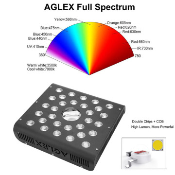 Full Spectrum LED Grow Light 600W Indoor Plants