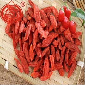 Fruits de Goji séchés antioxydants