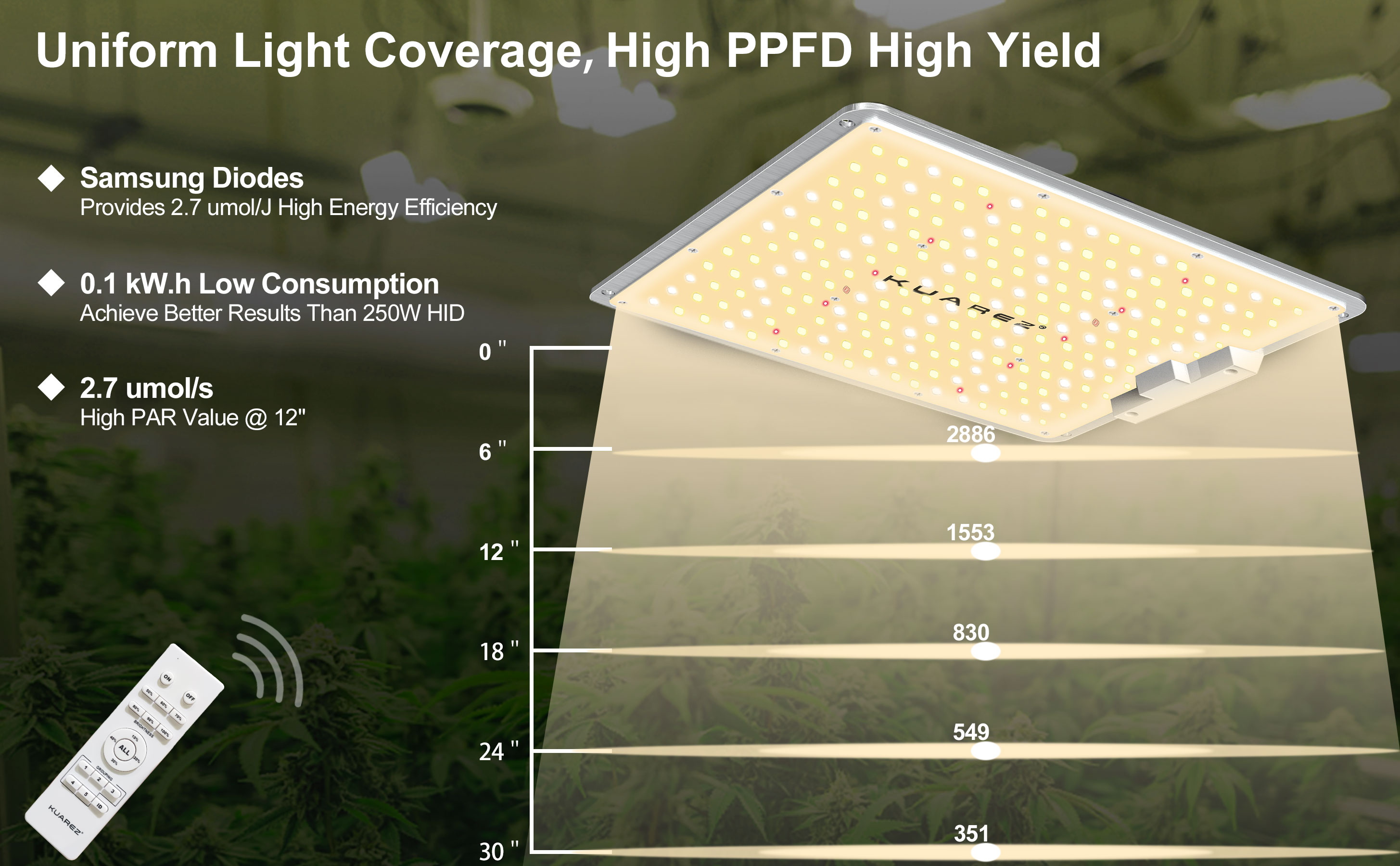 led light grow