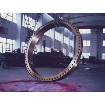 Large size forged flange