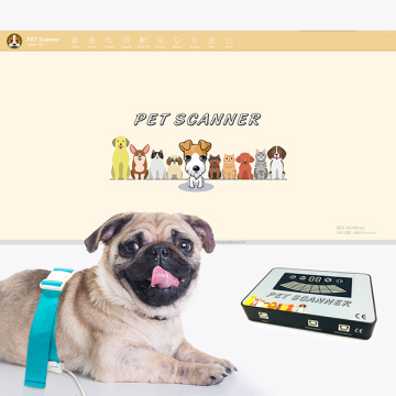 Cat dog body health checking machine QRMA device