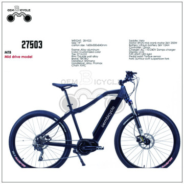 Fat electric mountain mid drive electric bike