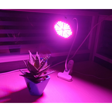 Grow bulb from grocery store 290LED 45W