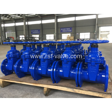 Ductile Iron BS5163 Resilient Seat Gate Valve