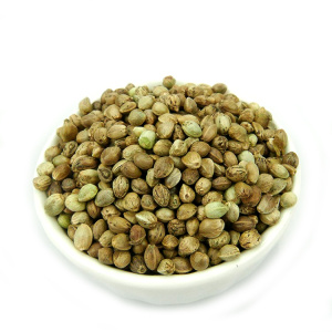 Bulk 99% Pure Raw Hemp Seed Chia Seed
