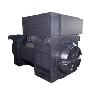 Black Color 10500v High Voltage Industrial Alternator