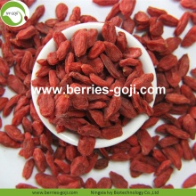 Wholesale Nutrition Dried Raw Organic Lycium