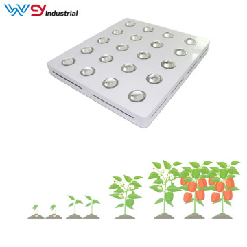 Grow led mini garden 4000w grow light