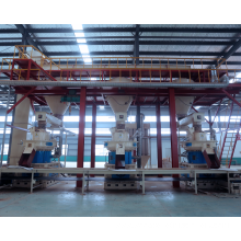 Asia Biggest Wood Pellet Production Line