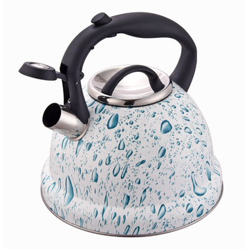 Rust-resistant kettle BPA-free whistling