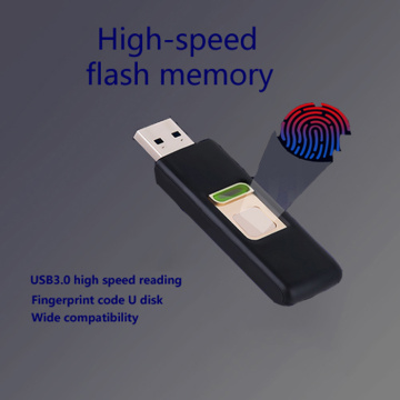 Factory Direct Selling Fingerprint U  Disk