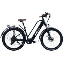 Middle Drive Motor Electric Bicycle