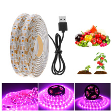 USB LED Plant Grow Light Strip Fitolampy Grow Lights For Indoor Plant Flower Seedling For Hydroponic Greenhouse Seedlings